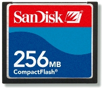 256mb Compact Flash (Cf) Memory Card