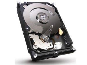 ST3000DM001 3TB 7200 RPM SATA 3.5