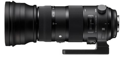 150-600mm F5-6.3 DG OS HSM Sports Telephoto Zoom Lens for Canon EOS *FREE SHIPPING*
